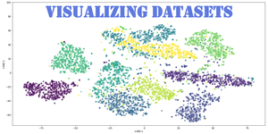 visualizing datasets with t-SNE